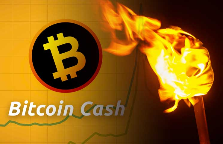 BCH Version of BTC Lightning Network Torch Passing Commences, Many View SLP As Being Distinctive