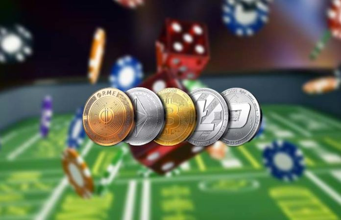 Gambling with Prices: Are Coin Holders Rolling the Dice within the Crypto Market Like a Casino?